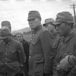 Могла ли Япония уцелеть в 1945 году?
