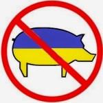 Украинский вопрос разделил польскую элиту и польский народ