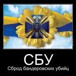 Возвращение из украинского ада... Надолго ли ?
